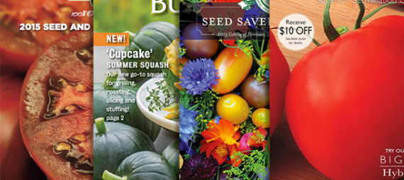 How Does Your Garden Grow ~ Ordering and Reading Seed Packets