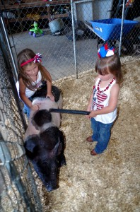 Josie and Abby checking on one of their show pigs.