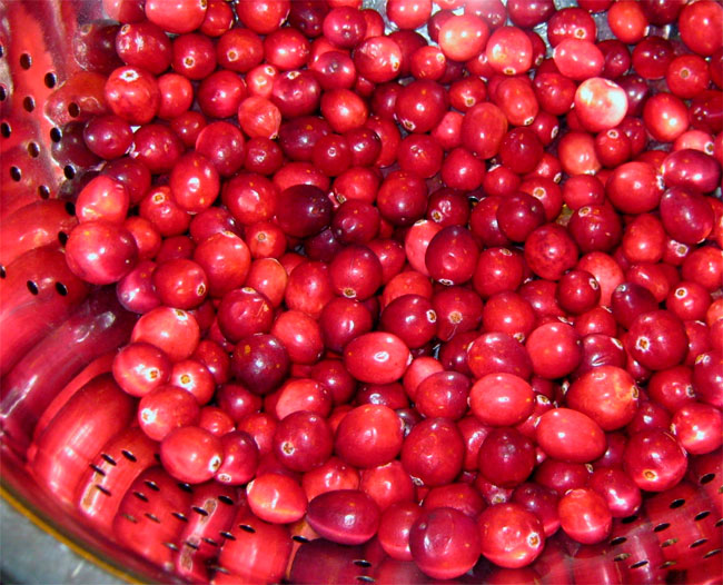cranberry-dried