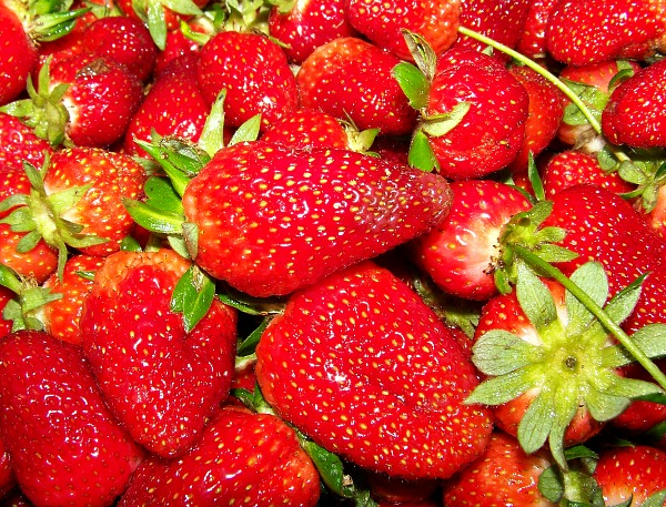 FB Strawberry pic header