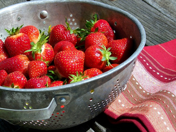 FB Strawberry picking colander