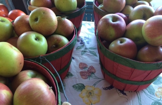 Arkansas apples