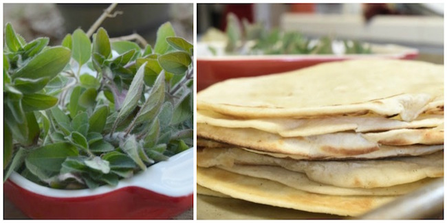 Oregano and tortillas Taste Arkansas